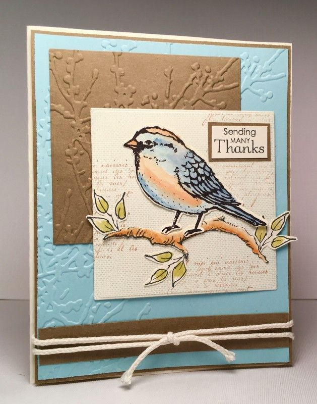 Blue Bird by Pam MacKay - Cards and Paper Crafts at Splitcoaststampers