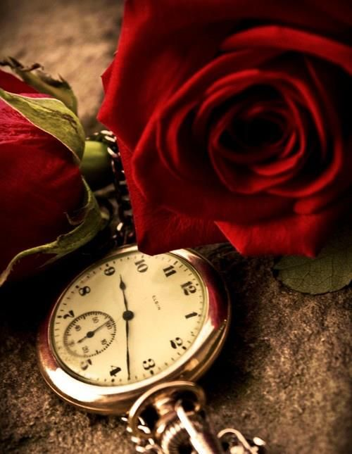 334 Best Images About Clocks Amp Time On Pinterest Pocket