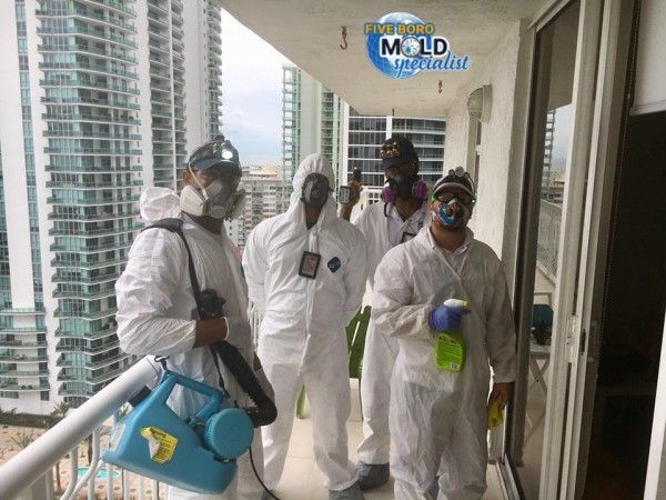 Five Boro Mold Specialist Offers Incomparable Inspection Detection Services