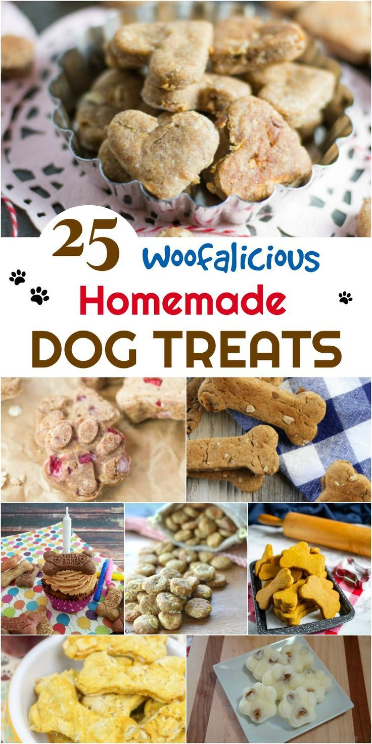 25 Woofalicious Homemade Dog Treats Dog Biscuit Recipes