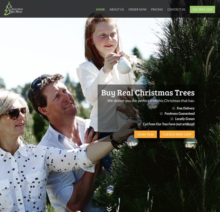 Christmas Tree Man supply and instal fresh Christmas trees to the greater Sydney region.