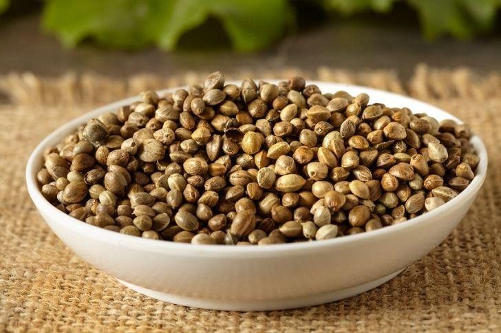 Where do you buy hemp seeds