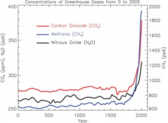 Petit et al., 1999 - Google 検索