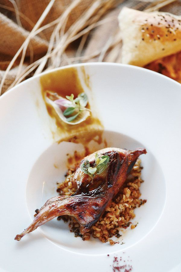 Oven-roasted wild goose #recipes
