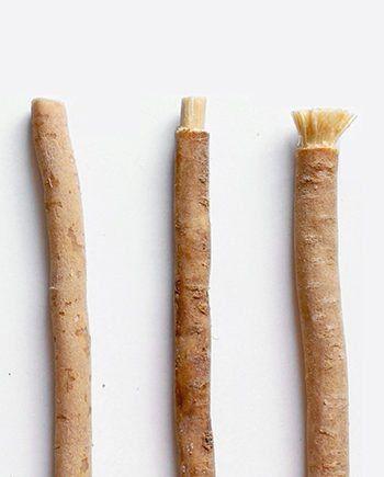 Přírodní kartáček na zuby YONI ze salvadory perské