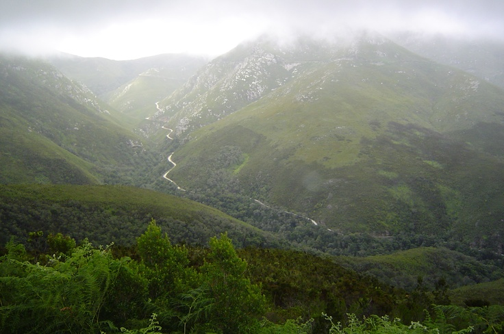 Outeniqua Mountains, George - South Africa