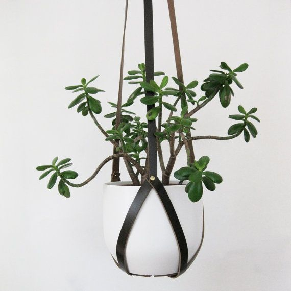 Suspend your plant in style with a recycled leather hanger.