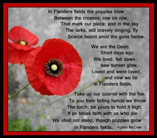 remembrance day canada esl