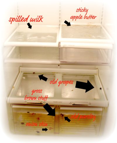 Refrigerator Cleaning Tips-Fill your sink with steaming hot water, vinegar, baking soda, and a bit of dish soap. Using a dish brush, scrub away the grime from the drawers and shelves.