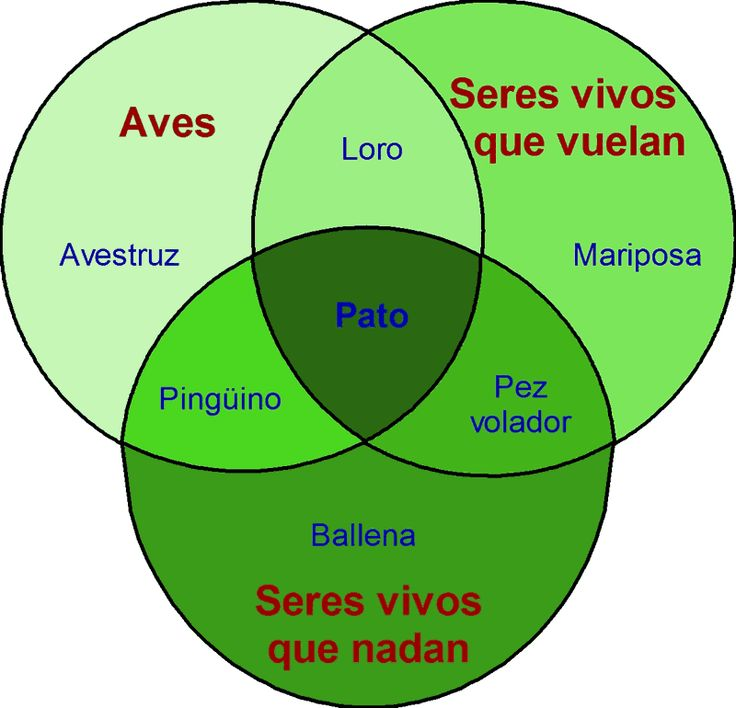 38 best pobre ana images on pinterest spanish class spanish john venn y sus crculos mgicos ccuart Image collections