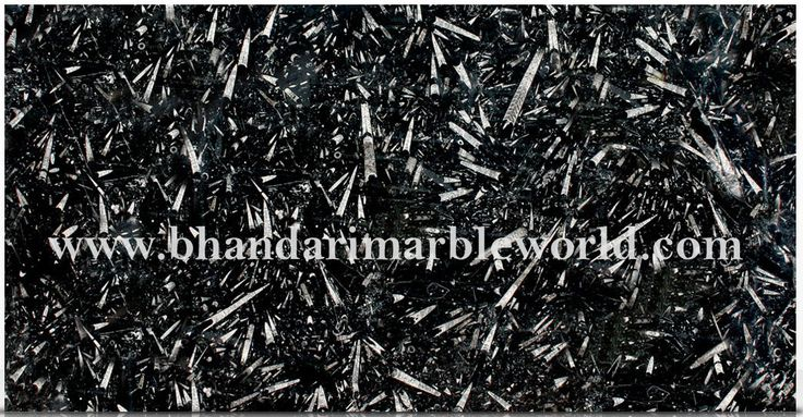 BLACK FOSSILE MARBLE  This is the finest and superior quality of Imported Marble. We deal in Italian marble, Italian marble tiles, Italian floor designs, Italian marble flooring, Italian marble images, India, Italian marble prices, Italian marble statues, Italian marble suppliers, Italian marble stones etc.