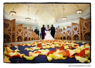 Rose Petals in the Aisle - Wedding Spotlights: Angela + Al | Magical Day Weddings | A Wedding Atlas Fan Site for Disney Weddings