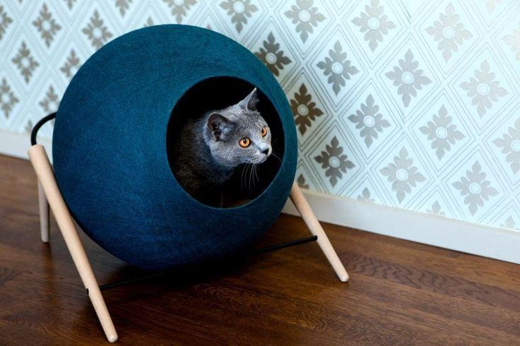 1000 id es sur le th me panier chat sur pinterest panier pour chat coussin pour chien et. Black Bedroom Furniture Sets. Home Design Ideas