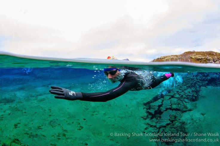 Diary of an open water swimmer - Wild about swimming and Great North Swimmers: FIRE AND WATER ICELAND SWIM TRIP