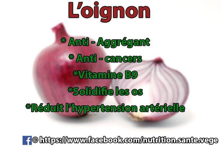 Oignon : anti-aggrégant _ anti-cancer _ vitamine B9 _ solidifie les os _ réduit l'hypertension artérielle