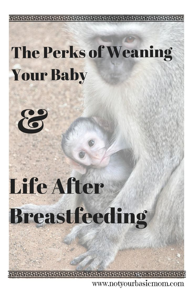 The perks of weaning your baby from the breast and life after breastfeeding. An essay on the high, lows, and in betweens of exclusively breastfeeding your baby.