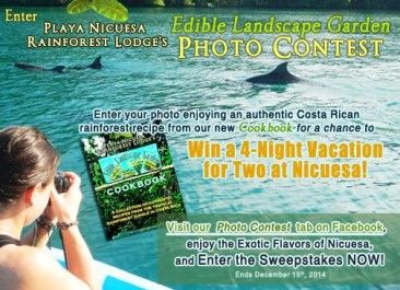 Win a trip to Playa Nicuesa Lodge in Costa Rica with new tropical cookbook