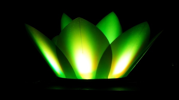 ecofenix - fuente flor de loto - isla san marcos by Ecofenix , via Behance