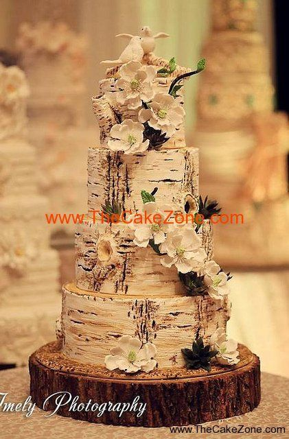 Rustic style wedding cake by The Cake Zone. Birch tree trunks + Love Birds