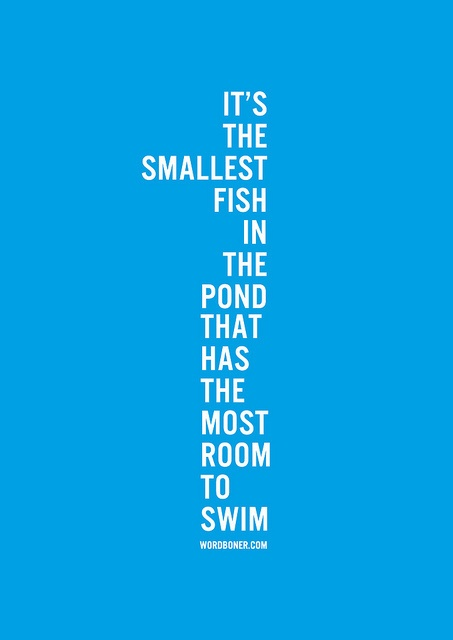 you.fish