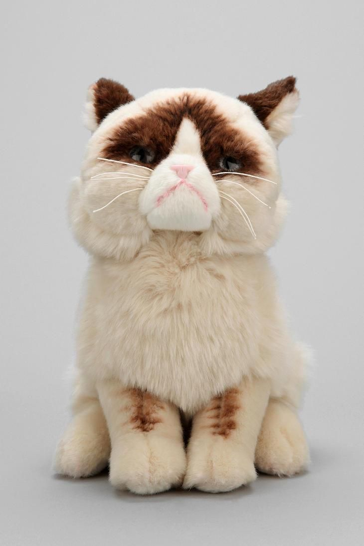 Grumpy cat plushy. You know you can't resist. #catober