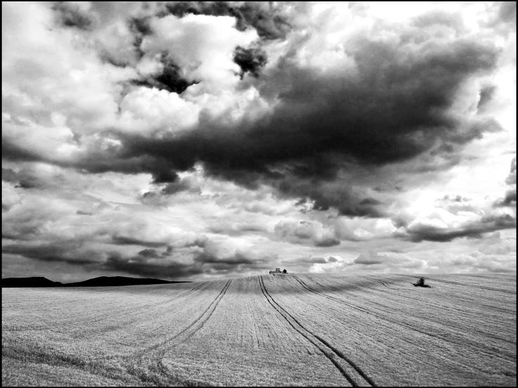 photo: Attila Udvardi