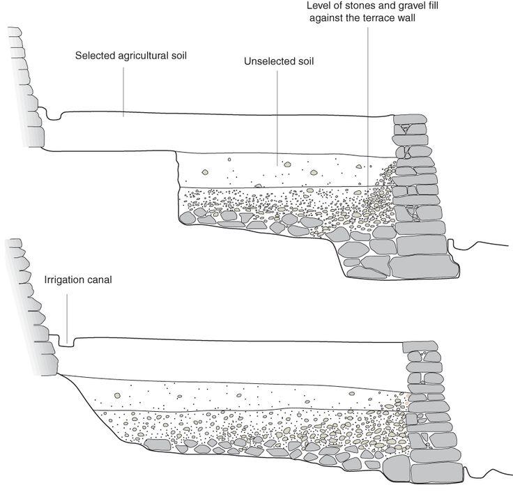 25 best images about terraces slope management on for Terrace farming diagram