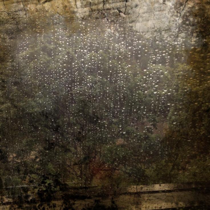 Rainy Day  www.taniaespondaaja.com  #art #dailyphotoblog #photography #rain #window