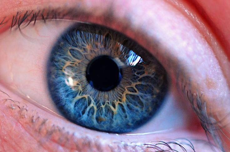 Scientists Develop A Device That Can Treat Glaucoma Directly Inside The Eye