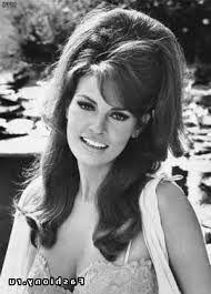 Image result for 1960 hairstyles for long hair