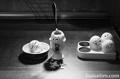 Yumurtaların hikayesi komik yumurtalar komik resim funny eggs story 14