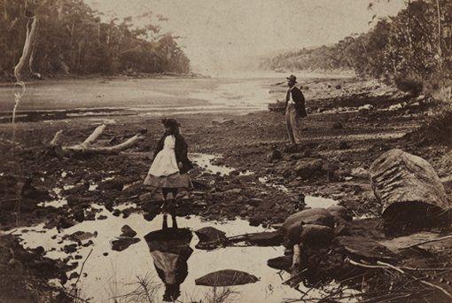 Unknown photographer Australian scenery, Middle Harbour, Port Jackson 1860s, carte de visite