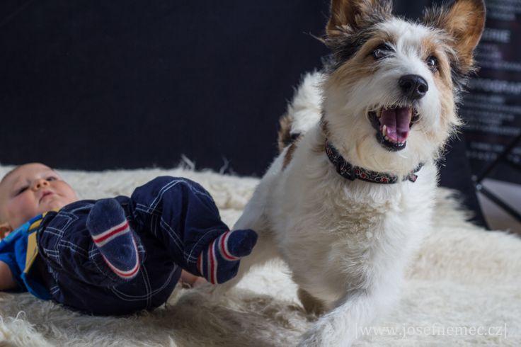 Portréty dětí a psů