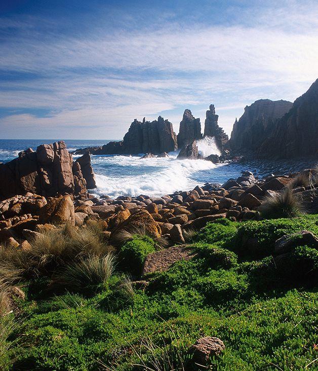 Phillip Island   #Australia #Nature #Travel