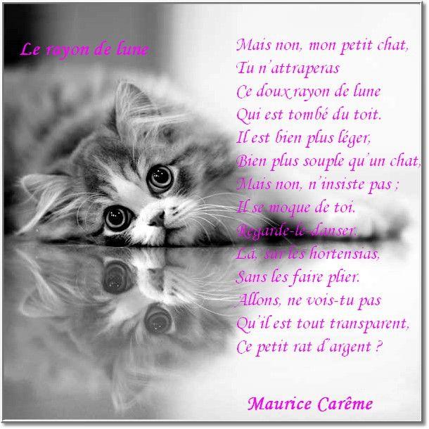 Maurice CARÊME   Poeme de baudelaire, Poeme, Maurice careme