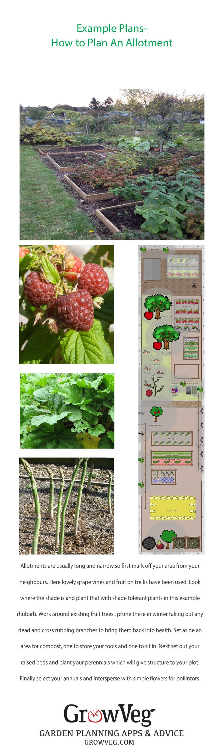 703 best vegetable garden plans images on pinterest for Low maintenance vegetable garden ideas
