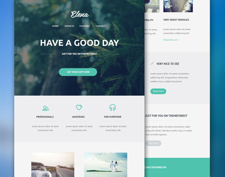 elena-email-template-free-psd