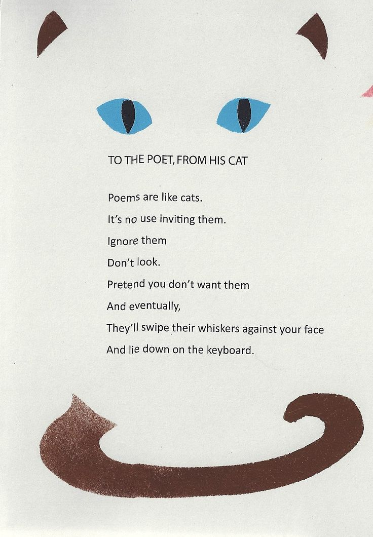 To the Poet, from His Cat | - exploring poetry - | Short ...