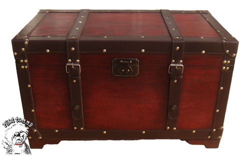 steamer trunk idea