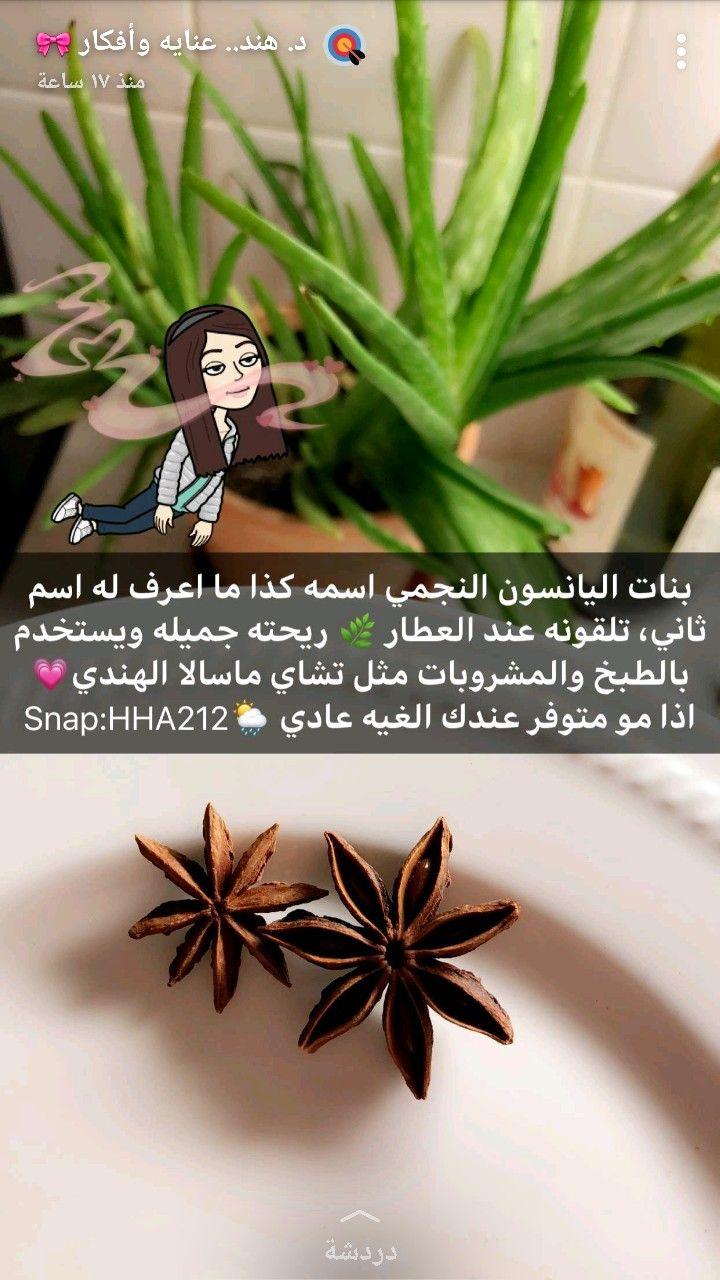 Pin By Cherries Flower On مقتطفات من Snap د هند Remedies Lil App