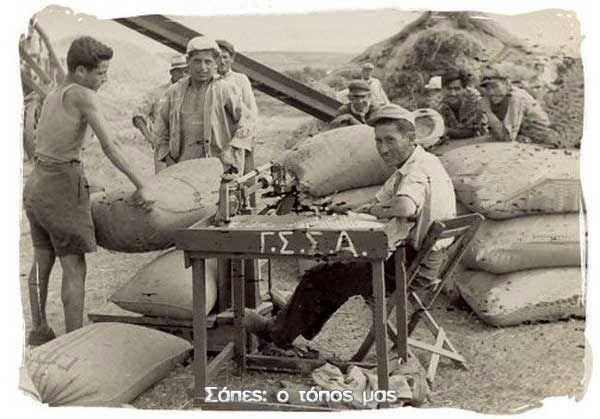 1956 - Αλώνια Σαπών. Ο ζυγιστής Παν. Τραμπίδης, την ώρα που ζυγίζει τα τσουβάλια με το στάρι. Νεαροί εργάτες κουβαλούν τα βαριά τσουβάλια από την πατόζα στη ζυγαριά και μετά στον τόπο αποθήκευσης. Αναγνωρίζω στη φωτογραφία το Χρήστο Γρηγοριάδη και το Δημήτριο Μπεκιαρίδη (πάνω από το καπέλο του Π.Τραμπίδη). (Αρχείο: Παν. τραμπίδη).