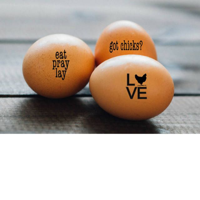 Farmers Market Chicken Gift Idea Stamp for Eggs Egg Stamp I Came Second Egg Stamp Chickens Funny Egg Stamp Chicken Stamp