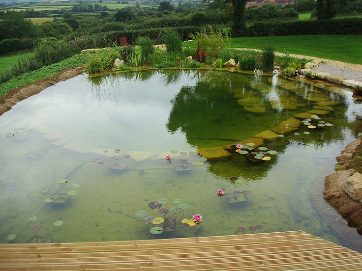 17 best images about natural swimming pools on pinterest for Natural garden pond design