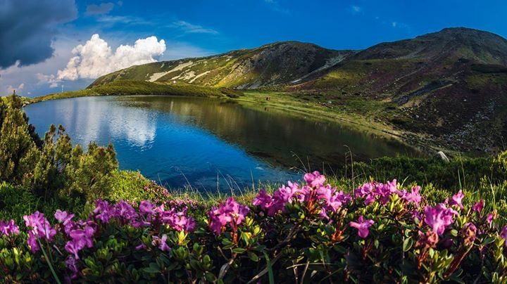 Ro❤ Lacul Lala-Mare muntii Rodnei