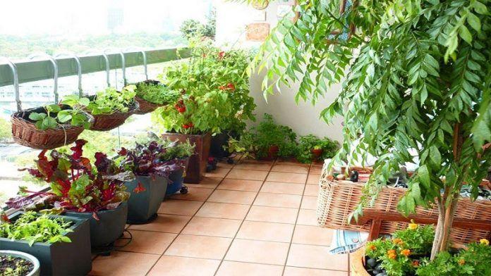 10 Cozy Small Apartment Balcony Garden Design Ideas To Produce Positive Vibe Every D In 2020 Balcony Herb Gardens Terrace Garden Design Balcony Garden Ideas Vegetables