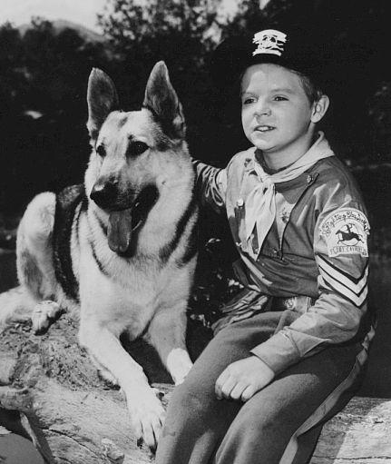 Rin Tin Tin, 1954 - 1959