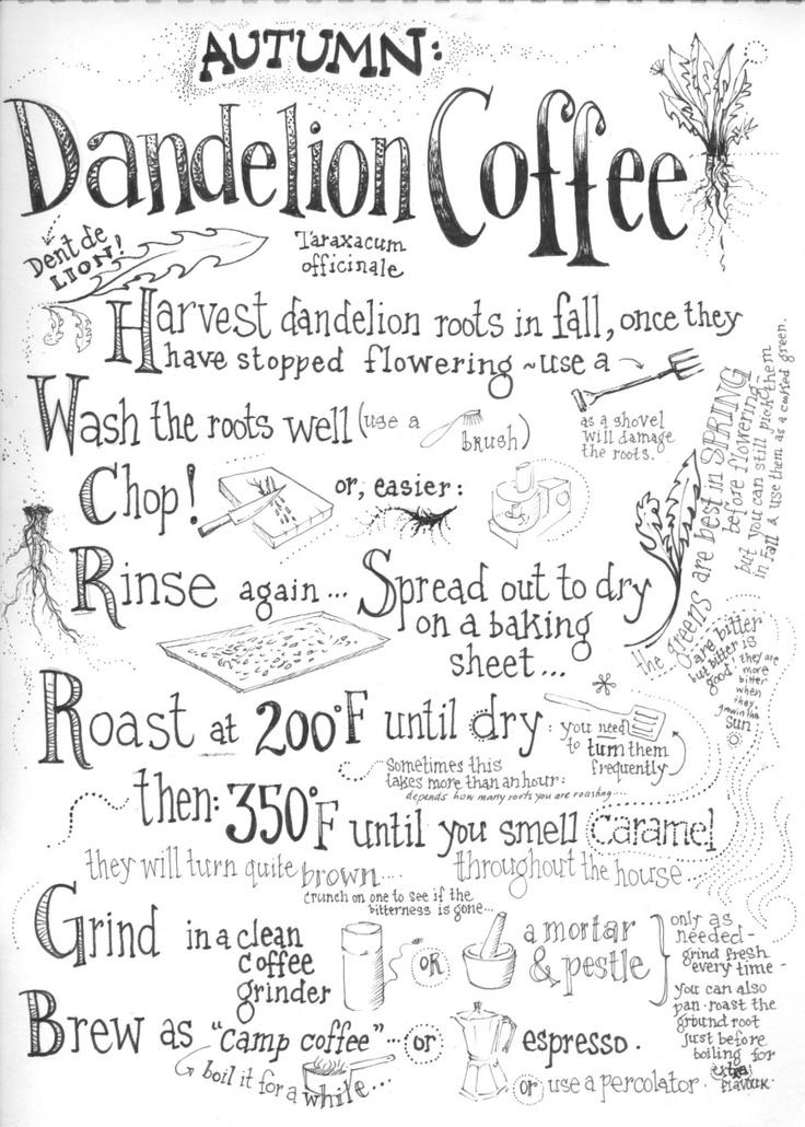 5. Dandelion Coffee, add cacao pwd for mocha