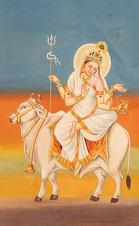 Maha Gauri (great white)
