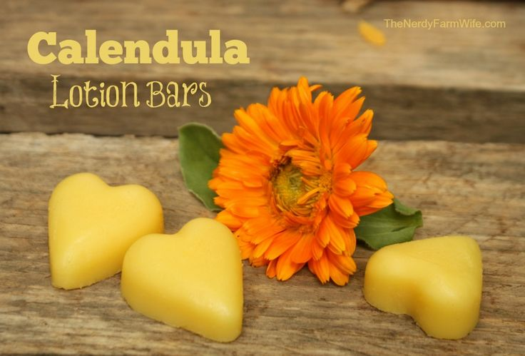 Calendula Lotion Bars are easy to make, are perfect for treating dry/cracked skin, and make wonderful gifts too!