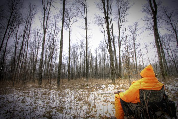 3. The opening day of deer hunting season is a holiday.